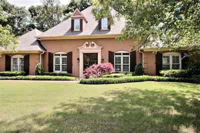Collierville Single Family Home For Sale: 10345 Stoney Brooke