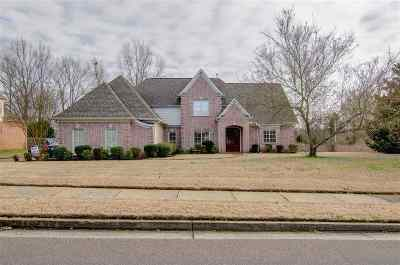 Collierville Single Family Home For Sale: 561 Estanaula
