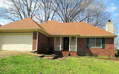 Collierville Single Family Home For Sale: 369 Cascade Falls