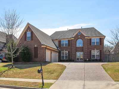 Arlington Single Family Home For Sale: 12147 Brooks River