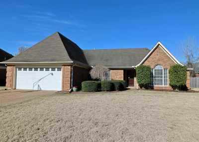 Bartlett Single Family Home For Sale: 4705 Shadow Field