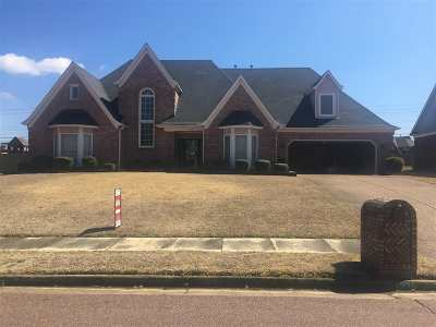 Collierville Single Family Home Contingent: 1320 Pinnacle Point
