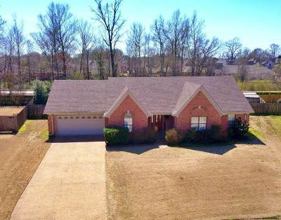 Memphis Single Family Home For Sale: 7727 W Antler