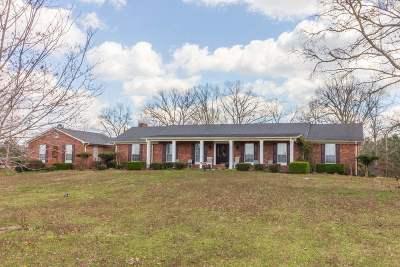 Selmer Single Family Home For Sale: 210 New Bethel