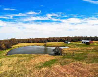 Residential Lots & Land For Sale: 910 Allen