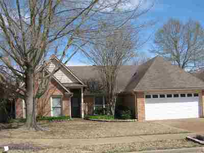 Collierville Single Family Home Contingent: 158 Doris Meadow