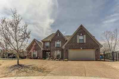 Arlington Single Family Home Contingent: 11089 Goat Valley