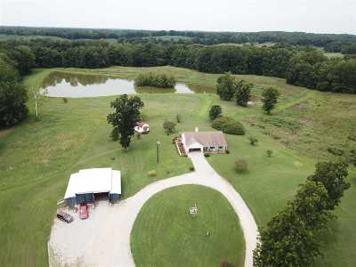Henning Single Family Home For Sale: 532 Cody