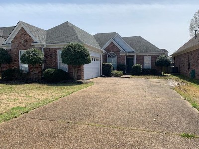Olive Branch Single Family Home Contingent: 4945 Graham Lake