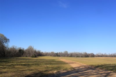 Rossville Residential Lots & Land For Sale: 280 Frazer