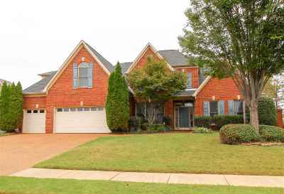 Collierville Single Family Home Contingent: 4841 Rainy Pass