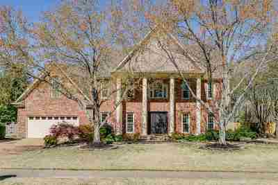 Collierville Single Family Home For Sale: 1317 Creek Valley