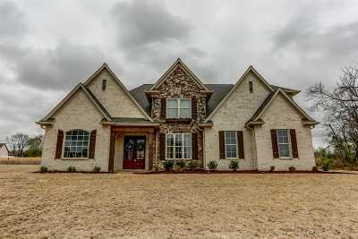 Atoka Single Family Home Contingent: 92 Silver Dollar