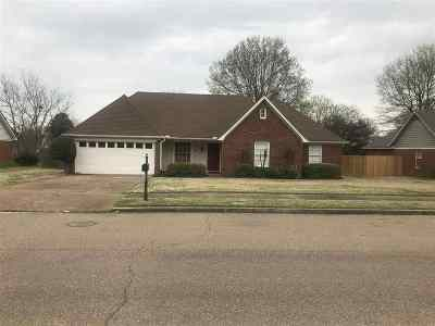 Collierville Single Family Home Contingent: 364 Rose Trellis