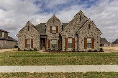 Arlington Single Family Home For Sale: 6417 Creekside Lake