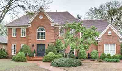 Collierville Single Family Home Contingent: 1234 Pinpointe