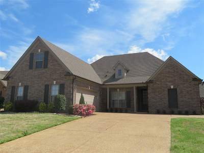 Southaven Single Family Home For Sale: 3494 Lindsey
