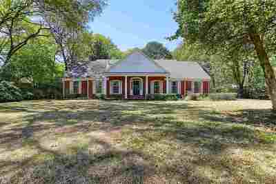 Memphis Single Family Home Contingent: 489 S Goodlett