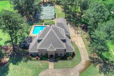 Memphis Single Family Home For Sale: 9085 Riveredge