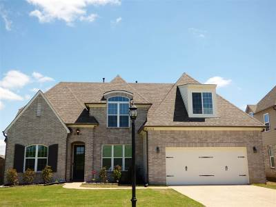 Olive Branch Single Family Home For Sale: 13535 Berkstone