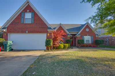 Southaven Single Family Home For Sale: 2527 Hunters Pointe