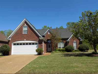 Bartlett Single Family Home Contingent: 8208 White Wing