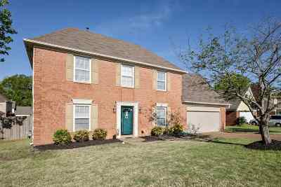 Collierville Single Family Home For Sale: 905 Ten Oaks
