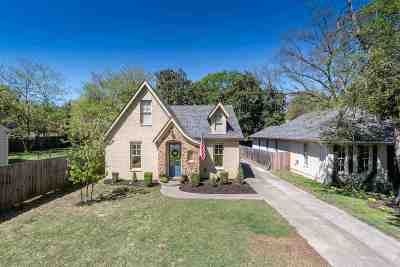Memphis Single Family Home For Sale: 585 Alexander