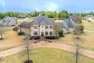 Piperton Single Family Home For Sale: 160 Magnolia