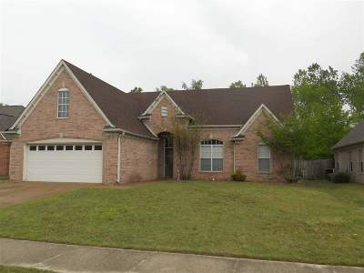 Bartlett Single Family Home For Sale: 8138 W White Wing