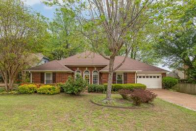 Memphis TN Single Family Home For Sale: $205,000
