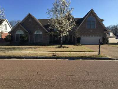 Collierville Single Family Home For Sale: 10453 Red Stone