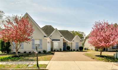 Memphis Single Family Home For Sale: 8923 Versilia