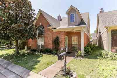 Memphis Single Family Home For Sale: 593 W Ashley Glen