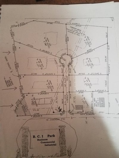 Brighton Residential Lots & Land For Sale: Old Hwy 51 S