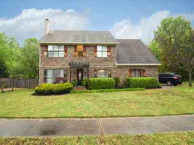 Memphis Single Family Home For Sale: 369 Walnut Trace