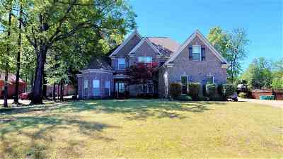 Olive Branch MS Single Family Home For Sale: $270,000