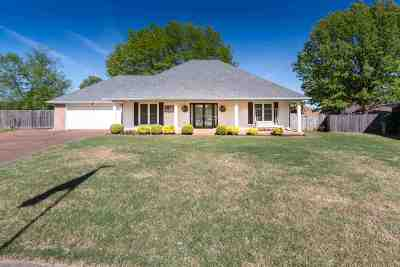 Shelby County Single Family Home For Sale: 3084 Orion