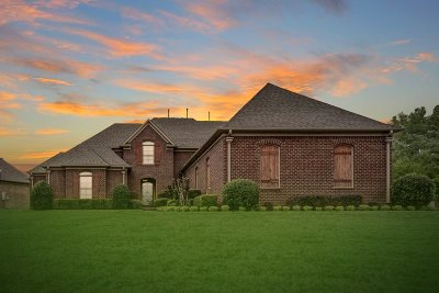 Lakeland Single Family Home For Sale: 4593 Mount Gillespie