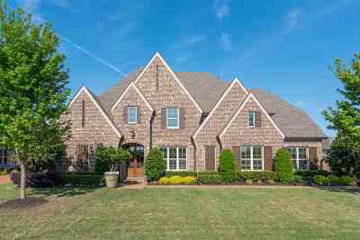 Collierville Single Family Home Contingent: 1379 Martway