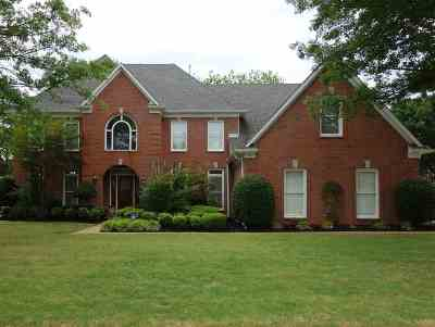 Collierville Single Family Home For Sale: 1341 Tuscumbia