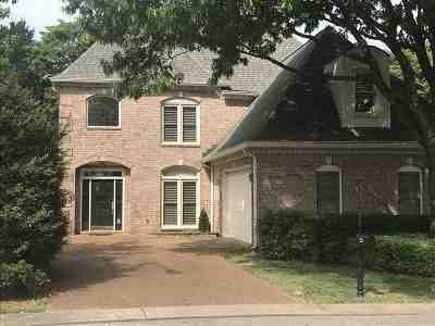 Collierville Single Family Home For Sale: 523 Warwick Willow