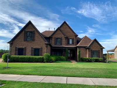 Collierville Single Family Home Contingent: 940 Nine Oaks