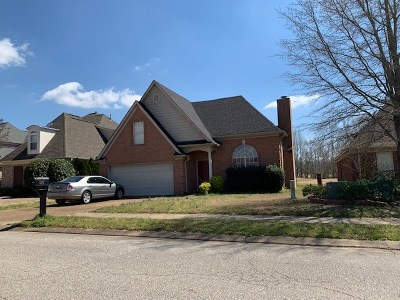 Olive Branch Single Family Home For Sale: 7267 Lauren