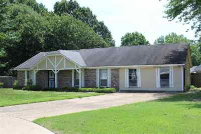 Bartlett Single Family Home For Sale: 3280 Clearview