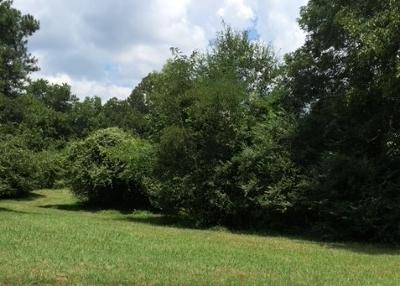 Collierville Residential Lots & Land For Sale: Collierville-Arlington