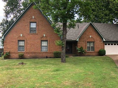Bartlett Single Family Home For Sale: 3730 Old Creek