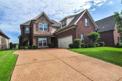 Olive Branch Single Family Home For Sale: 6926 N Dakota