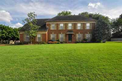 Germantown Single Family Home For Sale: 7593 Cross Village