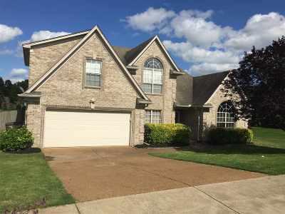 Bartlett Single Family Home For Sale: 3896 Gila